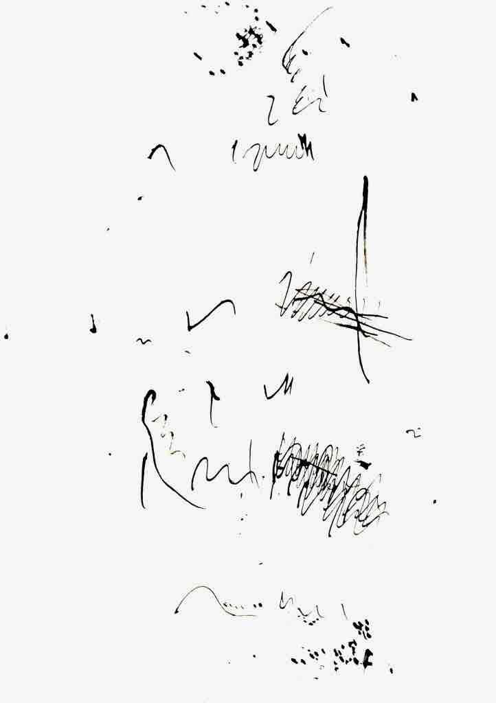 Vogelschrift2-722x1024_dunk